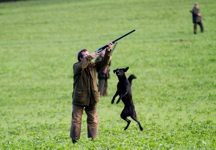 PHEASANT_SHOOT_058